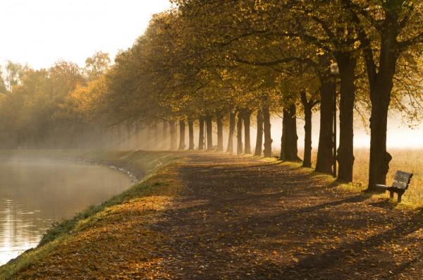 Laat je inspireren door de herfst