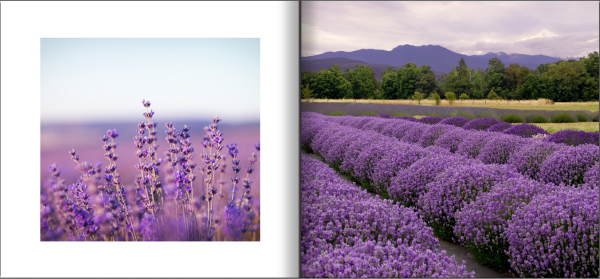 voorbeeldspread fotoboek