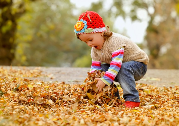 7 x zin in herfst & fotograferen