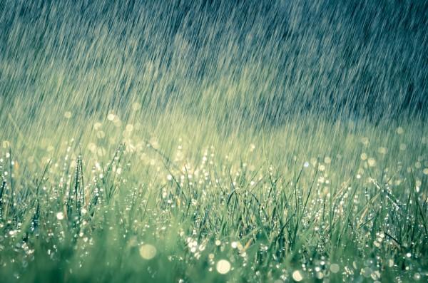 Fotografietips in de regen