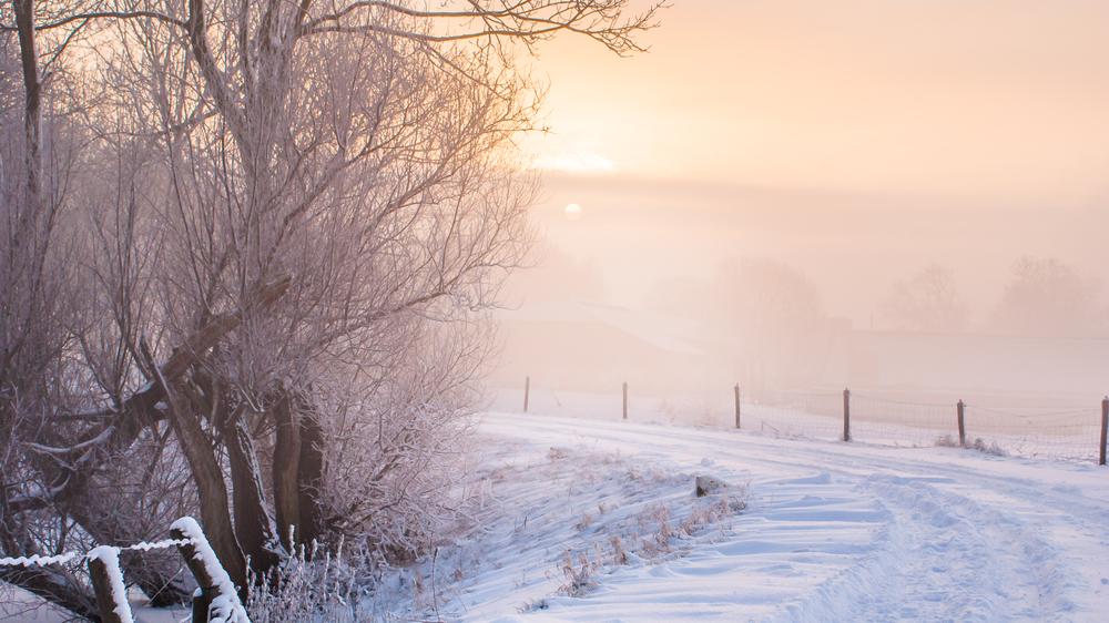 Fotograferen met en in de sneeuw