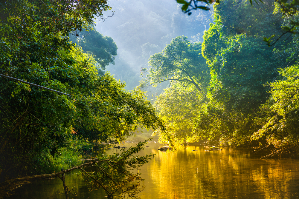 Fotografeer de zeven wereldwonderen: editie natuurlijke wereldwonderen